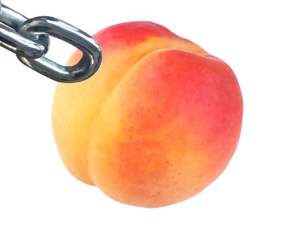 Peach X Link - part 10